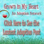 see-adoption-blog-post